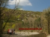 2011_04_09-sturmschaden-helenental-ff-siegenfeld-c-claus-boswart-02