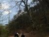 2011_04_09-sturmschaden-helenental-ff-siegenfeld-c-claus-boswart-11