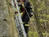 2011_04_09-sturmschaden-helenental-ff-siegenfeld-c-claus-boswart-23