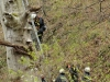 2011_04_09-sturmschaden-helenental-ff-siegenfeld-c-claus-boswart-24