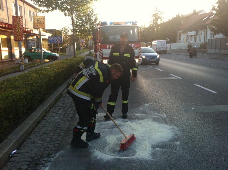2011_09_15-oel-wienerstrasse-01-hp