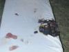 2011_10_06-brandeinsatz-anzengruberstrasse-hp-04