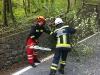 2012_04_23-te-sturm-urtelstein-hp-01