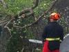 2012_04_23-te-sturm-urtelstein-hp-02