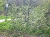 2012_04_23-te-sturm-urtelstein-hp-07