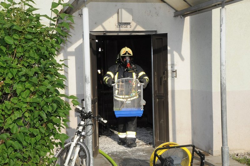 2012_05_12-be-karl-gleichweitstrasse-hp-18