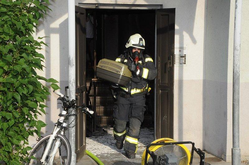 2012_05_12-be-karl-gleichweitstrasse-hp-19