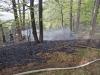 2013_04_27-waldbrand-soosser-lindkogl-15