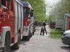 2013_04_27-waldbrand-soosser-lindkogl-17