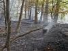 2013_04_27-waldbrand-soosser-lindkogl-20